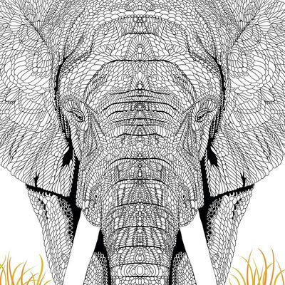 The Menagerie: Animal Portraits to Colour image number 3