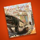 Harry Potter and the Goblet of Fire: Illustrated Edition image number 6