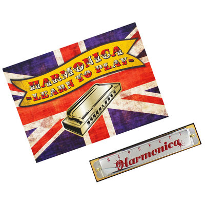 Retro Games - Learn to Play the Harmonica image number 2