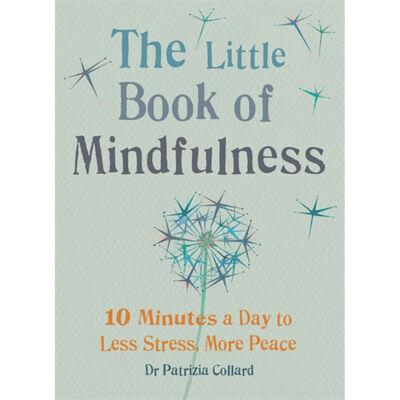 Little Book of Mindfulness image number 1