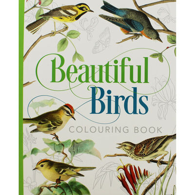 Beautiful Birds Colouring Book image number 1