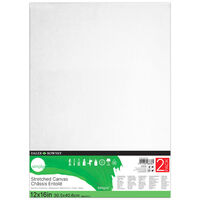 2 Daler Rowney Stretched Canvases - 12x16 Inch