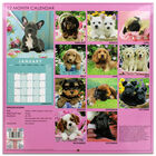 Cute Dogs 2022 Square Calendar and Diary Set image number 4