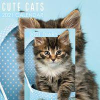 Cute Cats 2021 Calendar and Diary Set