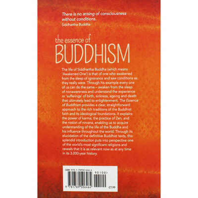 The Essence of Buddhism image number 3
