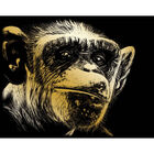 A4 Engraving Art Set: Almost Human Ape image number 2