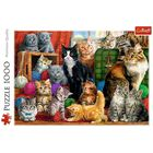 Feline Meeting 1000 Piece Jigsaw Puzzle image number 2