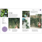 RHS: How To Garden When You're New To Gardening image number 2