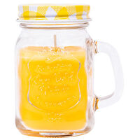 Citronella Candle Jar Assorted