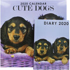 Cute Dogs 2020 Calendar and Diary Set image number 1