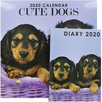 Cute Dogs 2020 Calendar and Diary Set