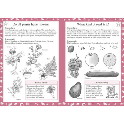 Science Made Easy KS2: Ages 7-8 image number 2
