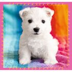 Cute Dogs 3-in-1 Jigsaw Puzzle image number 2