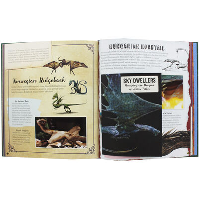 Wizarding World Movie Magic: Curious Creatures image number 2