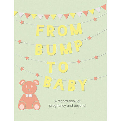 From Bump To Baby image number 1