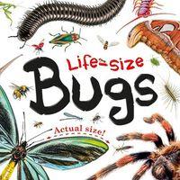Life-Size Bugs