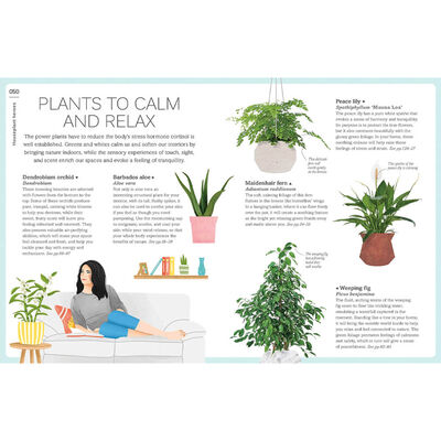 My House Plant Changed My Life image number 3
