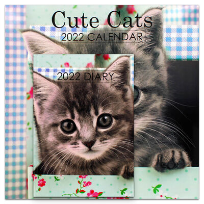 Cute Cats 2022 Square Calendar and Diary Set image number 1