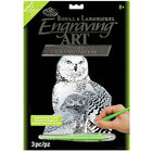 A4 Engraving Art Set: Snow Owls image number 1
