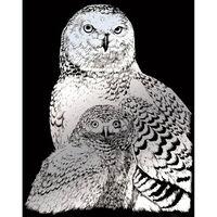 A4 Engraving Art Set: Snow Owls
