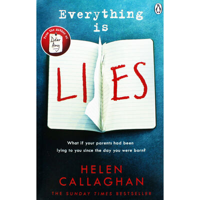 Everything Is Lies image number 1