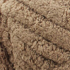 Loopy Lou Super Chunky Chenille Light Brown Yarn - 250g image number 2