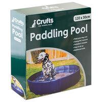 Crufts Dog Paddling Pool: Large