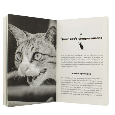 What Your Cat Is Thinking image number 2