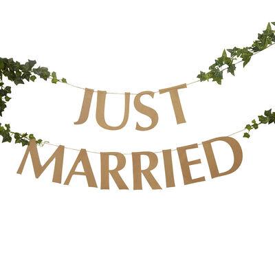 Just Married Kraft Bunting image number 2