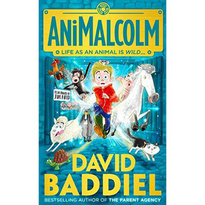 David Baddiel Collection: 3 Book Collection image number 3