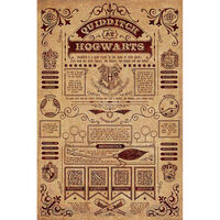 Harry Potter Quidditch At Hogwarts Wall Poster