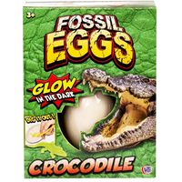 Reptile Fossil Egg - Assorted