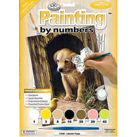 Painting By Numbers: Labrador Puppy