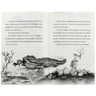The Boy Who Lived With Dragons image number 2
