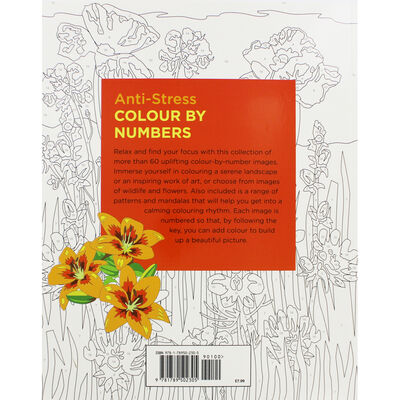 Anti-Stress Colour By Numbers image number 3