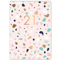 A5 Pink Terrazzo 2021 Day a Page Diary