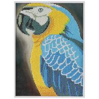 Diamond Painting: Parrot