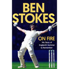 Ben Stokes: On Fire image number 1