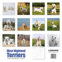 West Highland Terriers Calendar 2021