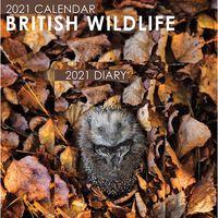 British Wildlife 2021 Calendar and Diary Set