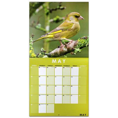 British Birds 2022 Square Calendar and Diary Set image number 2