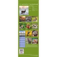 British Wildlife 2021 Slim Calendar and Diary Set