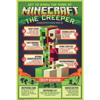 Minecraft Creepy Behaviour Poster