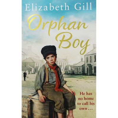 Orphan Boy image number 1