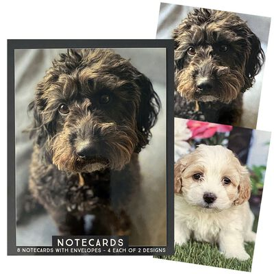 Assorted Traditional Notecards: Pack of 8 image number 5