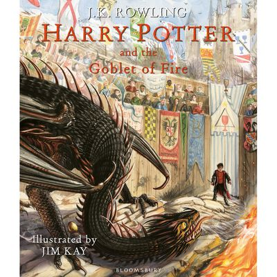 Harry Potter and the Goblet of Fire: Illustrated Edition image number 1