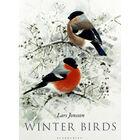 Winter Birds image number 1