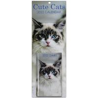 Cute Cats 2022 Slim Calendar and Diary Set