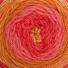 Caron Cakes Spice Cake Yarn - 200g image number 2