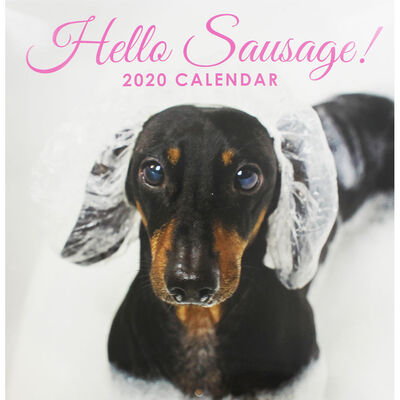Hello Sausage 2020 Square Calendar image number 1